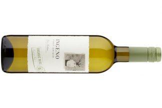 Ingeno Pinot Grigio - Organic